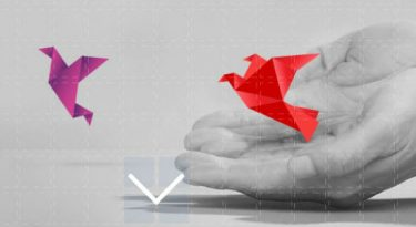 Kellogg investirá US$ 100 milhões em startups