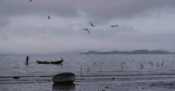 Série do canal Curta! discute poluição da Baía Guanabara