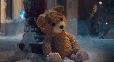 Ursos roubam a cena em campanhas