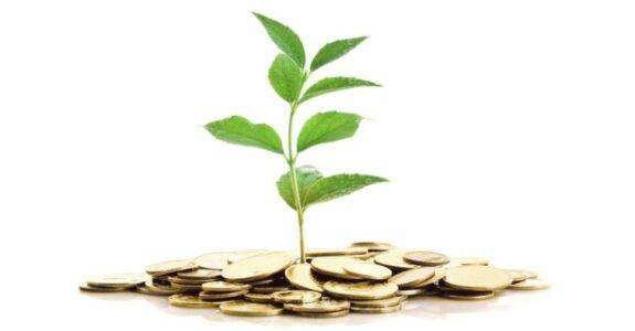 Sua startup está pronta para receber investimentos de uma Micro Venture Capital?