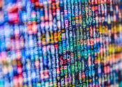 O efeito dos dados na dinâmica dos CMOs
