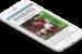 Seedtag, plataforma internacional de In-Image Advertising, chega ao Brasil