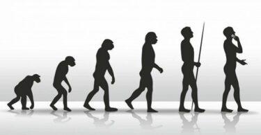 Darwin e a evolução das agências