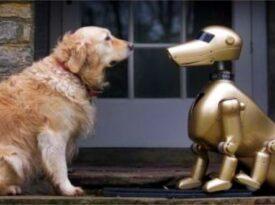 Assistente pessoal vai acabar com cães e gatos