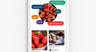 Estudo da iProspect mostra potencial da busca por imagem do Pinterest