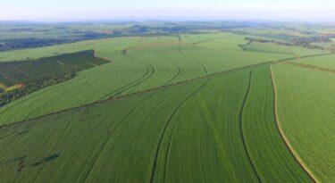 Basf conclui aquisição de ativos agro da Bayer