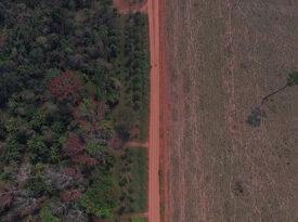 Natura reforça projeto pela conservação da Amazônia