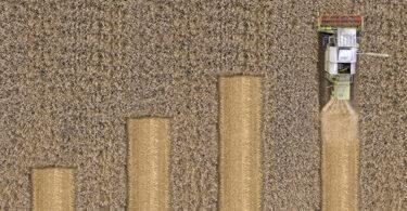 Agronegócio: atenção ao posicionamento de marketing