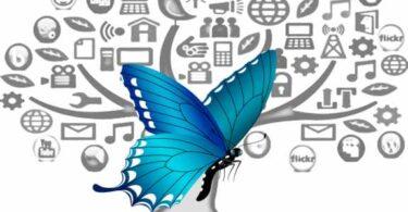 Mídia: borboletas pensando como lagartas
