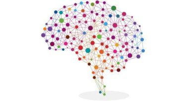 A importância da inteligência competitiva no contexto digital