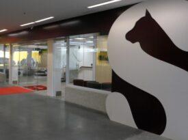 Petz inaugura rede de centros veterinários