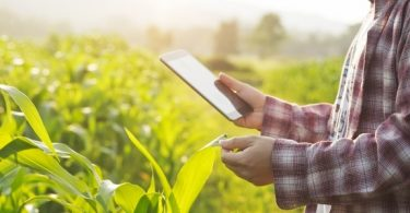 Agronegócio digital