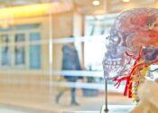 Marcas conversando com o cérebro do consumidor