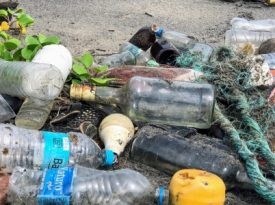 Empresas se unem para combater descarte de plástico