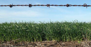 Empresas de agronegócio precisam defender causas