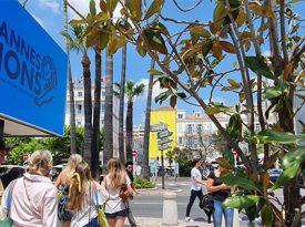 Cannes Lions estuda adiar festival para outubro