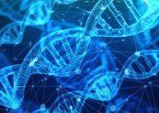 Unilever convoca ciência contra estereótipos