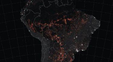 Como a tecnologia pode preservar a Amazônia e não queimar nosso filme