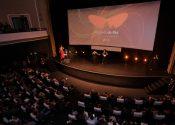 Sem verba, Festival do Rio investe em crowdfunding