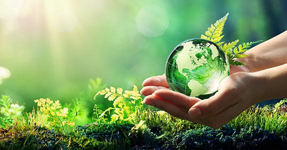 Sustentabilidade: em que patamar as marcas estão?