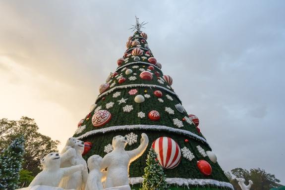 Interação, shows e luzes embalam Natal das marcas
