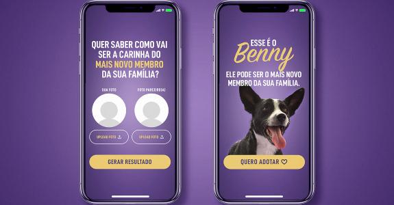 Qualitá e BETC/Havas lançam Tinder para adoção de pets