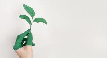 Marketing e o ESG: mais lealdade e valor para sua marca