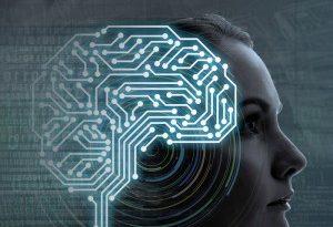 Zeitgeist do século XXI: algoritmo rei!
