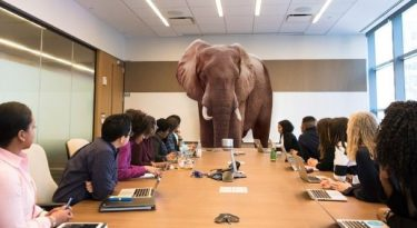 Lidando com o elefante dentro da sala