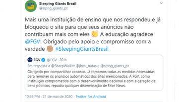 Sleeping Giants: o impacto das fake news sobre as marcas