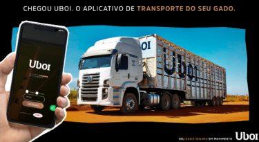JBS cria app para transporte de gado