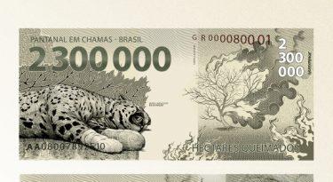 Greenpeace: cédula para alertar sobre queimadas no Pantanal