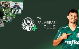 Os motivos que levaram o Palmeiras a investir em streaming