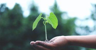 Do mundo V.U.C.A ao ESG, você está preparado?