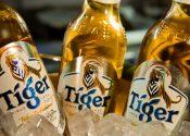 Grupo Heineken lança a cerveja puro malte Tiger no Brasil