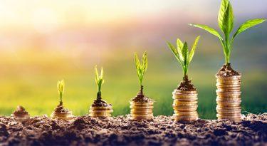 ESG: até 2025, o setor deve valer, globalmente, US$ 53 trilhões