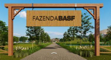 BASF lança hub de conteúdo do agronegócio