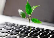 Como reduzir o custo ambiental de campanhas digitais