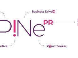 Pineapple hub muda marca
